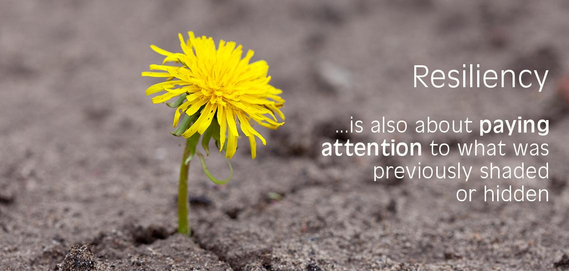 resiliency image of a flower emerging through desert soil